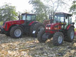 Tractors MTZ at Porumbeni