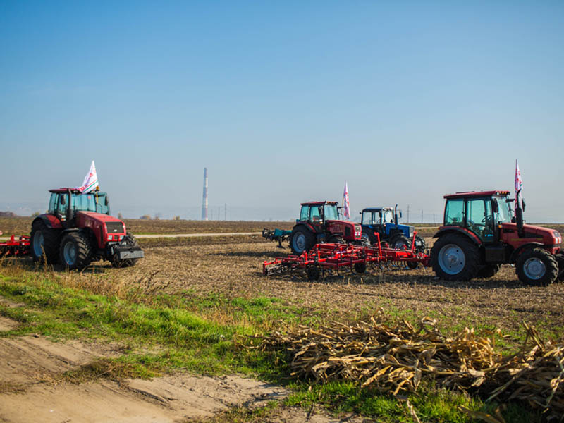 The results of the year for agriculture in Moldova
